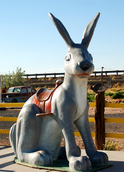 Ride the Jackrabbit. Route 66, near Joseph City, Arizona, U.S.A.