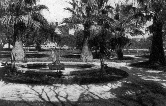 The Palm Court Garden in Byron